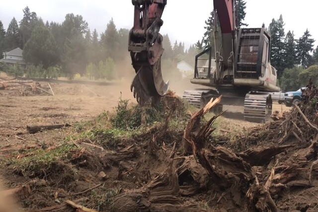 Norman Tree Care big machine performing stump removal with a special claw.