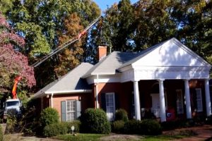 Norman Tree Care performing emergency tree services over a roof of a home.