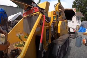 Norman Tree stomper machine being used to stomp and grind down trees.