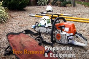 Norman tree removal preparation and equipment set